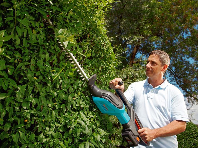 Snoeien knippen kies het juiste elektrische gereedschap for Tuin snoeien