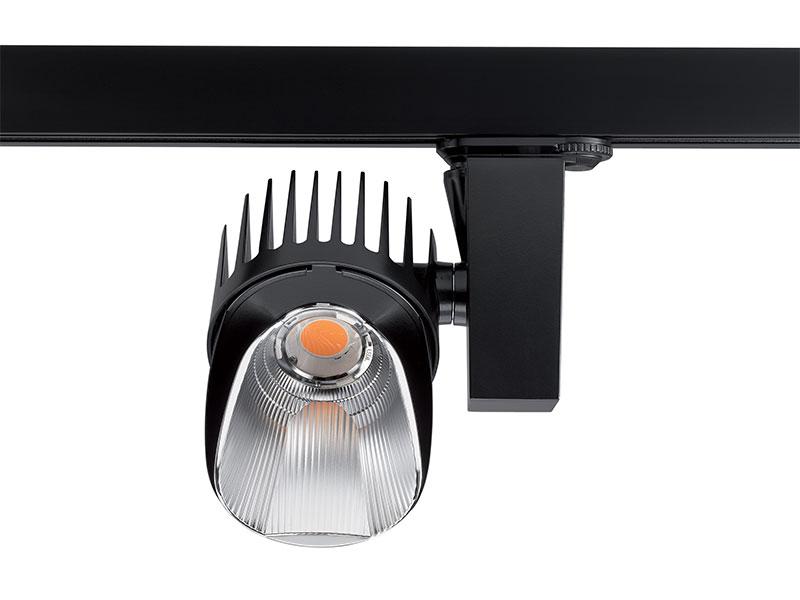 concord-beacon-shelf