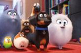 Filmreview: The Secret Life of Pets / Huisdiergeheimen (4K Blu-ray)