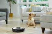 Zeven op tien Belgen moet extra stofzuigen door kat of hond