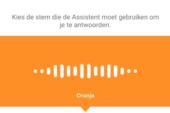 Mannenstem voor Belgische Google Assistant