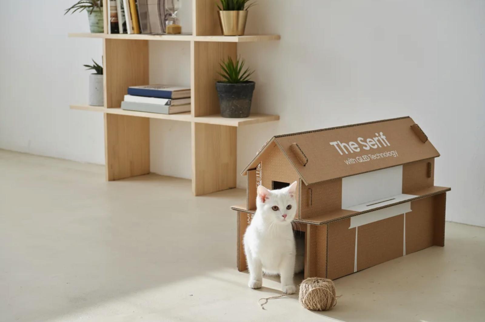 Verpakking designtelevisies Samsung snel om te bouwen tot tijdschriftenrek of slaapplek voor de kat